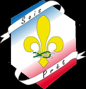 logo_CFS-minia